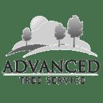 advanced tree service - bw logo